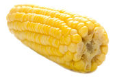 Maize on white — Stock Photo