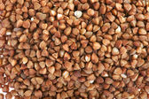 Buckwheat macro — Stock Photo