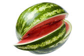 Watermelon close up — Stock Photo