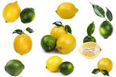 Fresh lime with lemon — Stock Photo