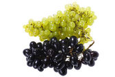 Sweet grapes close up — Stock Photo
