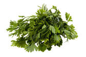 Parsley macro — Stock Photo