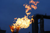 Burning torch — Stock Photo
