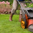 Senior man mowing the lawn — Stok fotoğraf