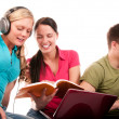 Group of students having fun, doing home work - Stock Photo