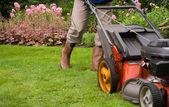 Senior homme, tondre la pelouse — Photo