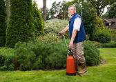 Senior man florist working in the garden — Stock Photo