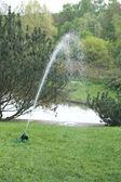 Sprinkler in japan garden — Stock Photo