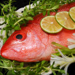 Stock Photo: Red Snapper Fish.