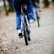 Two bicyclists going on a wood track - front foc — Stock Photo
