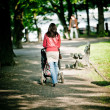 Woman walking with baby carriage in park - Stock Photo
