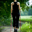 Nordic walking in summer nature - ストック写真