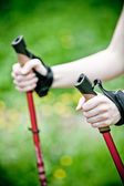 Nordic walking in summer nature — Stock Photo