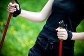μπατόν στη φύση καλοκαίρι北欧在夏天自然中散步 — 图库照片
