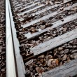Railroad tracks to nowhere close-up — Stock Photo