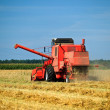 Red combine harvester working in a wheat field — Stock Photo #3711349