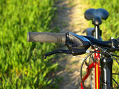 Mountain bicycle at sunny day — Stock Photo