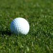 Golf ball on the green grass - Stock Photo