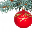 Christmas Decoration — Stock Photo #3185684