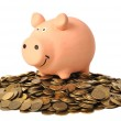 Piggy Bank and Coins — Stock Photo #3591544