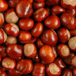 Chestnuts — Stock Photo