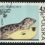Postmark — Stock Photo #3120797
