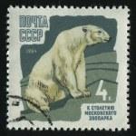 Postmark — Stock Photo #3186114