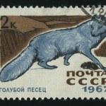 Postmark — Stock Photo #3186313
