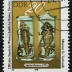 Postmark — Stock Photo #3498630