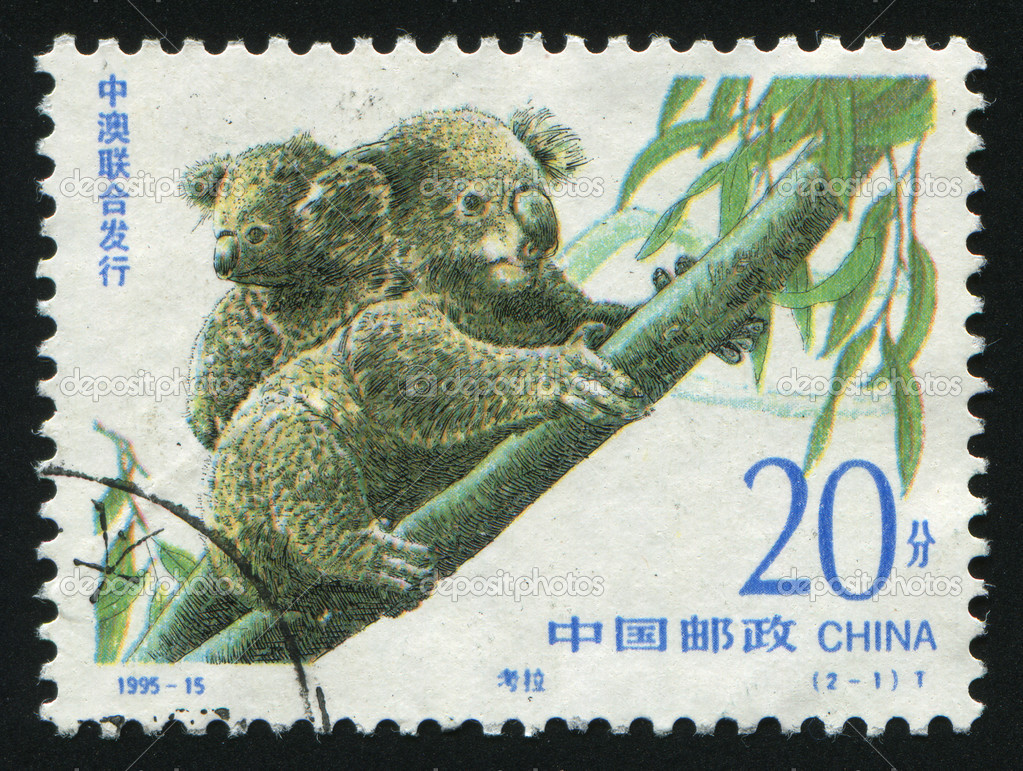 CHINA - CIRCA 1995: The Australian bear the koala,  circa 1995. — Stock Photo #3499846