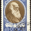 Retro postage stamp hundred fifteen — Zdjęcie stockowe