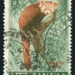 Postmark — Stock Photo #4270425