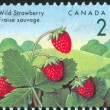Foto Stock: Stamp printed by Canada
