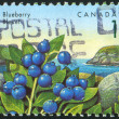 Stamp printed by Canada - Stock fotografie