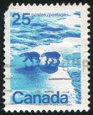 カナダによって印刷スタンプ — ストック写真