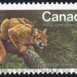 Stock Photo: Stamp printed by Canada