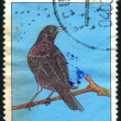 Postage stamp — Stock Photo #5152999