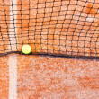 Tennis net and ball — Stock Photo