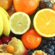Fruit mix — Foto de Stock