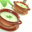 Wild herb soup — Stock Photo #2739120