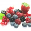 Berries — Stockfoto #2804245