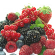 Berries — Stockfoto #2804264