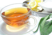 Sage tea — Stock Photo