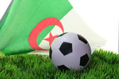Чемпионат мира 2010 — Стоковое фото