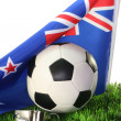 World Cup 2010 - Stock Photo