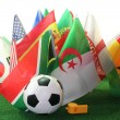 World Cup 2010 — Stock Photo #3324639
