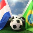 Royalty-Free Stock Photo: 2010 World Cup, Netherlands and Brazil