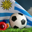 World Cup 2010 — Stock Photo #3284057