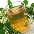 Elderflower tea — Stock Photo