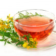 St. John's Wort Tea — Stock Photo